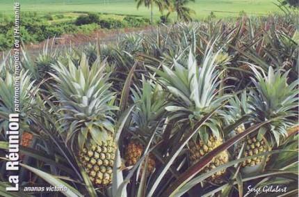 La Réunion – Octobre 2012
