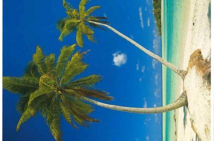 Polynésie – Juillet 2013