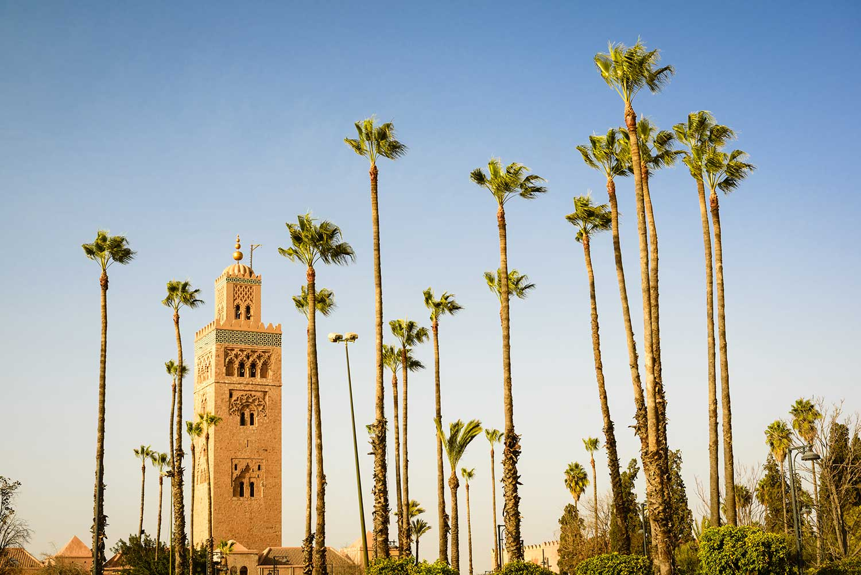 Image de l'article : Team building sous le soleil de Marrakech, entre ville et désert - Esprit Pionnier