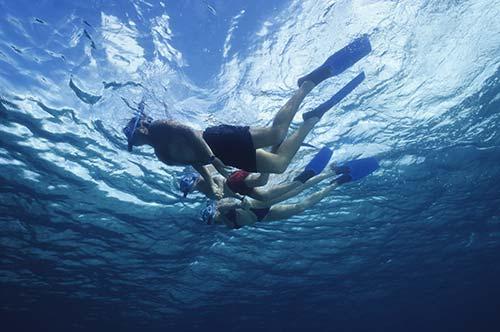 Image de l'article : Partez en groupe pour une croisière snorkeling aux Maldives - Esprit Pionnier